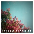 Follow That Bird